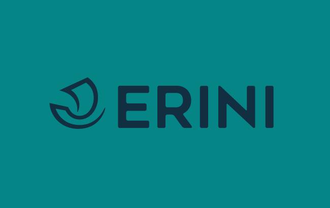 ERINI.COM